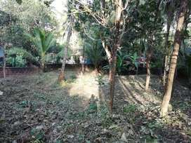Good Residential Plot available at Medical College..