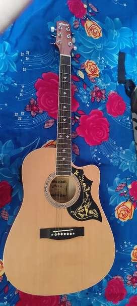 Hertz hza5100 guitar semi acoustic