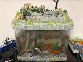 Imported Fish Aquarium for Salee