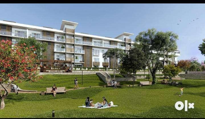 Whitefield, Bangalore vella 0