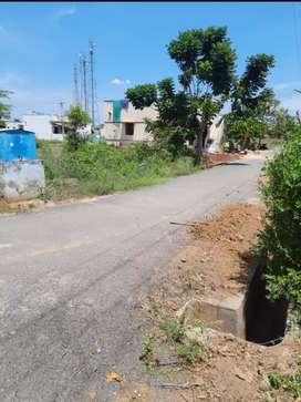 Land sale in taneerpandhalpalayam