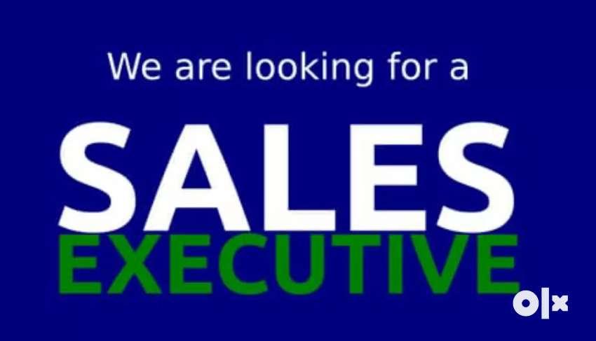 Job opening in sales 0