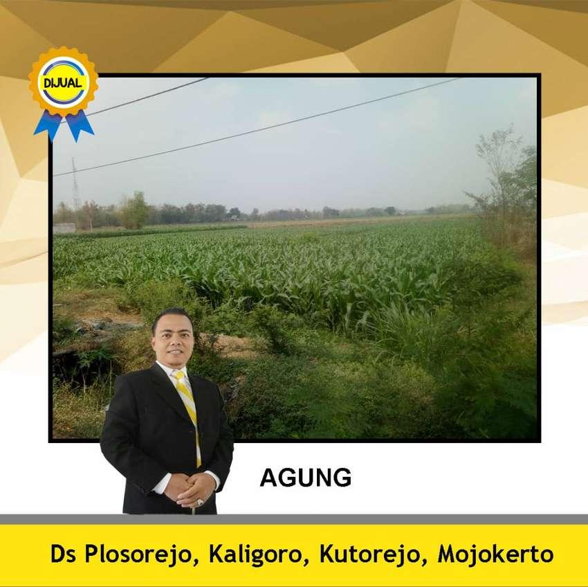 Tanah Mojokerto Area Industrial dan Nol Jalan Propinsi 0