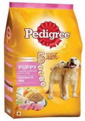 Pets Life Care Spots In Ashiyana Lucknow