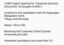 Customer Services Executives