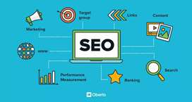 Search engine opptimising expert