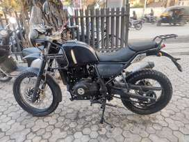 Brand new Himalayan for sale