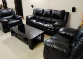 Sofa Set 3+1+1 with Centre Table