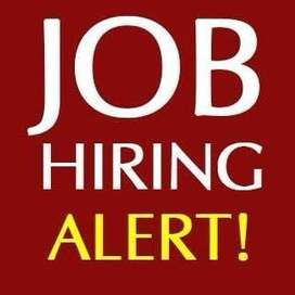 Job for sales and office