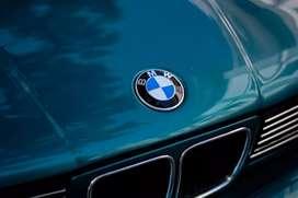 BMW E34 520i vanos