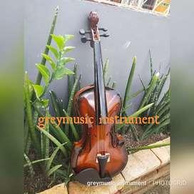 Biola greymusic seri 2891