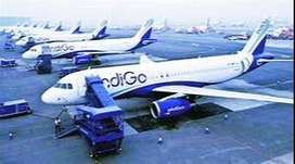 indigo hiring air ticketing checker apply fast0