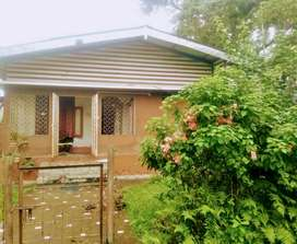 Assam type house with 2and half kotha land