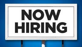 Tourism Company Hiring Candidates For Part Time Job.