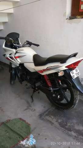 Hero Honda Karizma White for Sale