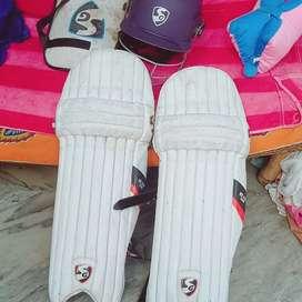 Cricket pad and helmets