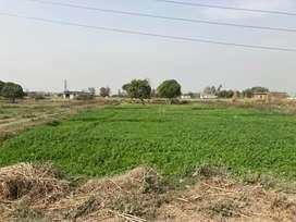 IIM ROAD, Kundeshwari, Kashipur