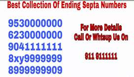Super vip mobile numbers