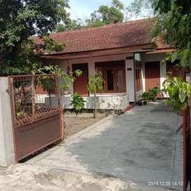 Rumah dan pekarangan luas pinggir jl aspal dekat dengan kecamatan