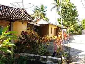 Rumah besar LT.476m dekat Pantai Parangtritis