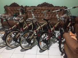 Sepeda Lipat 20 inchi / Folding bike