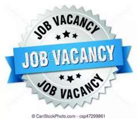 Female and male job vacancy
