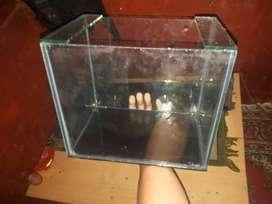 Aquarium baru berkualitas.