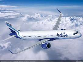 GOOD NEWS SO MANY VACANCY IN INDIGO AIRLINE!!   Go and grab the job.