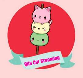 grooming kucing/mandi kucing delivery