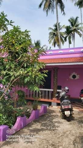 12cent plot with 2bhk house near road mukku alappuzha