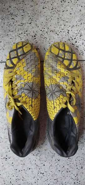 Nivea Compass Shoes