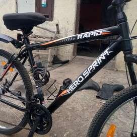 21 gear cycle hero