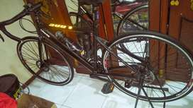Sepede Road Bike (Balap) Celcius LUX Istimewa Gress