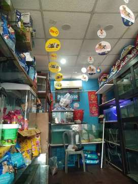 Aquarium shop for sale