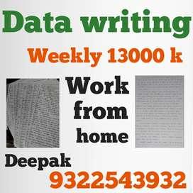 BEST DATA WRITING JOB AVAILABLE WEEKAY SALARY 13K