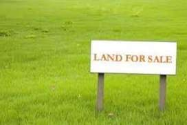(JAGRATI VIHAR GARH ROAD) ON ROAD 345 YARD PLOT 55000/- PER MTR