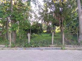 Land for sale near Baghmara pukhuri