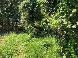 Tanah luas pusat kota Slawi, Kabupaten Tegal