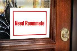 Need new roommate