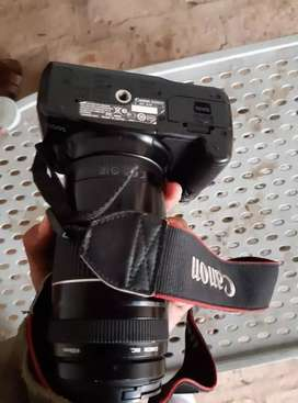Canon 500d with 75/300mm lens and two batteries