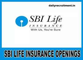 STATE BANK OF INDIA LIFE INSURANCE (INVESTMENTS)