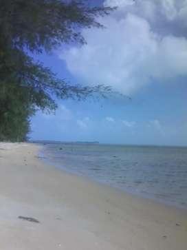 Dijual lahan pantai cantik , SHM ,di Kawasan bebas pajak Galang Batang