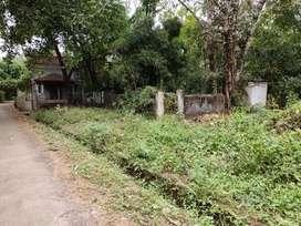 Assagao property