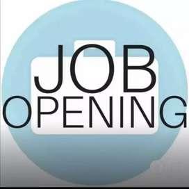 urgent vacancy back office