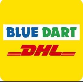 BlueDart Delivery and Pickup Staff