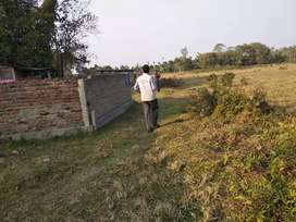 Urgent Sale of Land in Ramakrishna Nagar, Lichubari, Jorhat