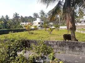 6 /6.5 cents- 4 PLOT.800M from Sreekariyam Jn.Near Karimbukonam Temple