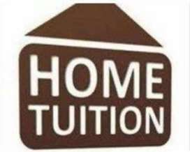 Experienced & Qualified  Tutor