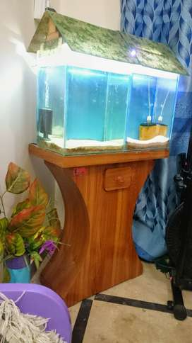 Dual Tank aquarium with accessories