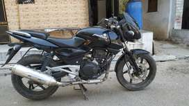 Pulsar 200 old model top condition